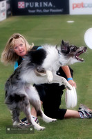 Purina Dog Challenge